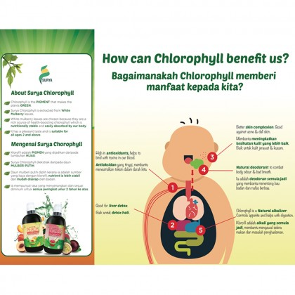 Surya Peach with Chlorophyll 500ml (EXP: Sept 2020)